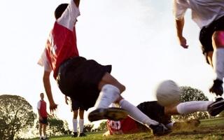 Goalinn