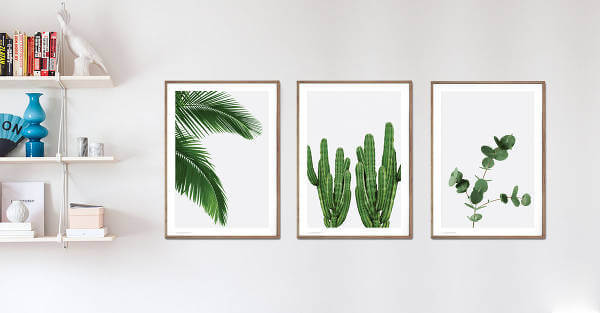 Plakater med planter på væggen