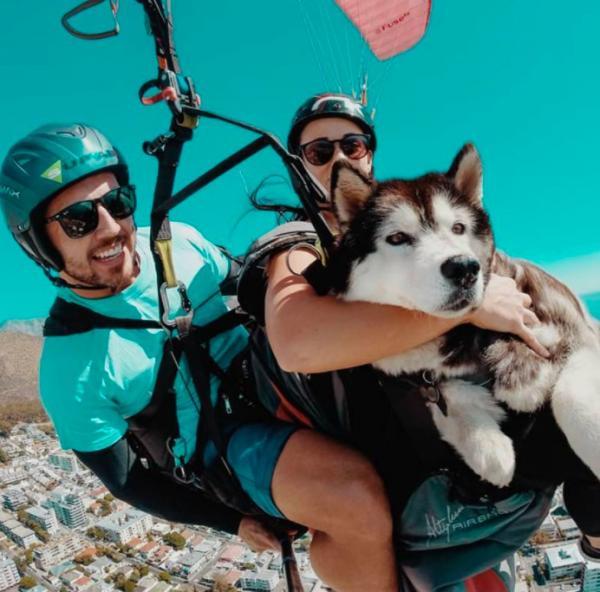 Uforglemmelige oplevelser for hele familien - inklusive hundenen!