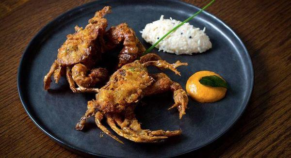 Der venter masser af spændende kulinariske oplevelser, når man vælger Spis i .