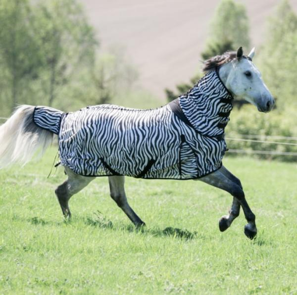 Horze har alt til hesten!